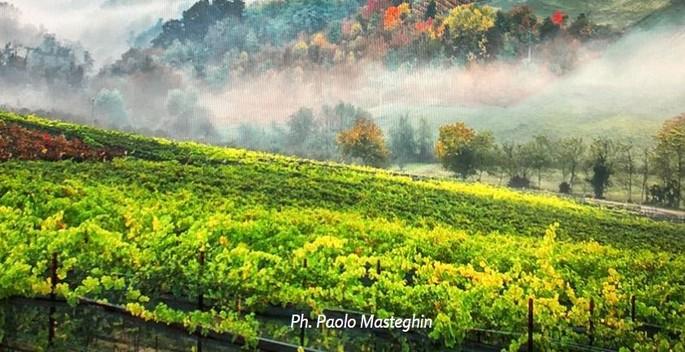 Фото Paolo Masteghin
