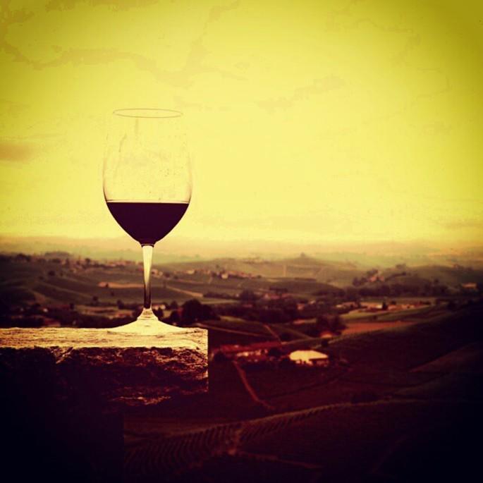 Wine Tasting Experience in Langhe Roero every weekend