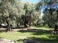 Parc du Pian, credit Judit Neuberger
